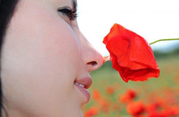 Шикарная молодая девушка позирует на поле с цветами